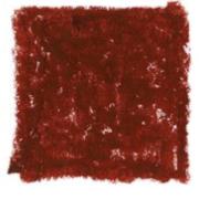 veneetsia punane